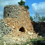 Photo Watchtower-0236-800